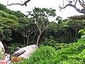Lam Kaen, Thai Mueang District, Phang-nga, Thailand - panoramio (4).jpg