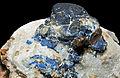 Lazurite et phlogopite sur calcite (Sar-e-Sang, Koksha Valley, Badakshan - Afghanistan) 2.jpg