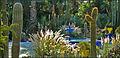 Le jardin de la villa Majorelle (Marrakech) (3260881612).jpg