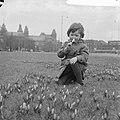 Lente nadert, crocussen bloeien in de perken te Amsterdam, Bestanddeelnr 912-0842.jpg