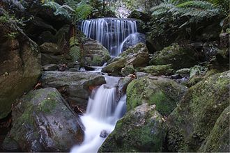 Leura, New South Wales - Image: Leura cascades in the Blue Mountains