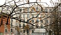 Light cream-colored 5-floor building 7 at Bolshoi Prospekt V O 22 Linia V O through the winter tree.jpg
