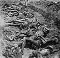 Lijken van vermoorde Chinezen in een massagraf., Bestanddeelnr 11763.jpg