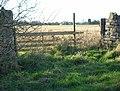 Lilford Park and Lilford Hall - geograph.org.uk - 626643.jpg