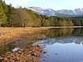 Loch Morlich Beach and Cairngorm Mountains - geograph.org.uk - 1170364.jpg