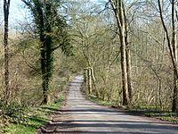 Lodge Lane, Chute Forest (geograph 4392764).jpg