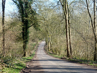 Chute Forest Human settlement in England