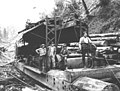 Logging crew and Washington Iron Works donkey engine no 3924, National Lumber and Manufacturing Company, ca 1920 (KINSEY 299).jpeg