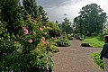 London - Kew Gardens - Secluded Garden 1995 by Anthea Gibson - View ESE.jpg
