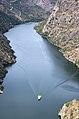 Los arribes del Duero vistos desde el Picón de Felipe. Se ve el catamarán turístico que los recorre.jpg