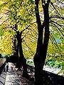Lungo Mera Alberto Giacometti - panoramio.jpg