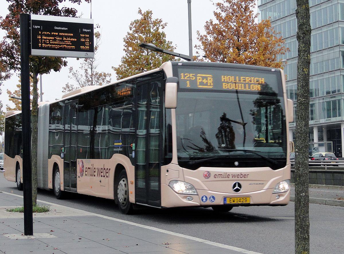 Lignes de bus du RGTR — Wikipédia