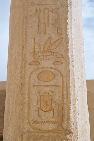 Ancient Egyptian royal titulary - Praenomen of the Cartouche of Thutmose II preceded by Sedge and Bee symbols, Temple of Hatshepsut, Luxor