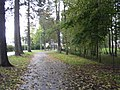 Mähe tee - panoramio - Aulo Aasmaa (6).jpg