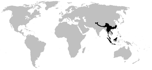 Megophryidae - Image: MEGOPHRYIDAE range
