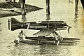 Macchi M.67.jpg