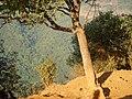 Mahabaleshwar - panoramio - Amey Khot.jpg