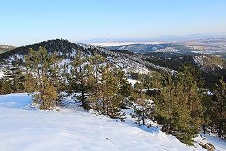 Maljen - Image: Maljen Divčibare zapadna Srbija vrh Paljevine