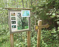 Mallusjoen Vanha Metsa Wikipedia