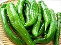 Manganji green pepper by yomi955.jpg