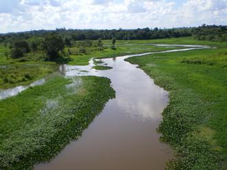 Aché - Mbaracayú Biological Sanctuary