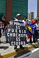Marcha contra el adoctrinamiento estudiantil, Caracas 26Abr14 (14160890191).jpg