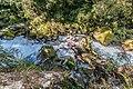 Marian Creek in Fiordland National Park 02.jpg