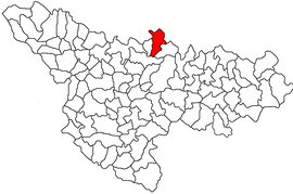 Location in Timiș County