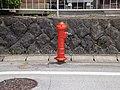 Matsumotomachi, Takayama, Gifu Prefecture 506-0808, Japan - panoramio (4).jpg