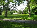Meadowland beside Lanhydrock House - geograph.org.uk - 1310779.jpg