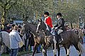Meeting of the North Cotswold Hunt at Broadway - geograph.org.uk - 1639482.jpg