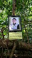 Memorial of Brett Darren Thomas along Mt Bartle Frere walking track.jpg
