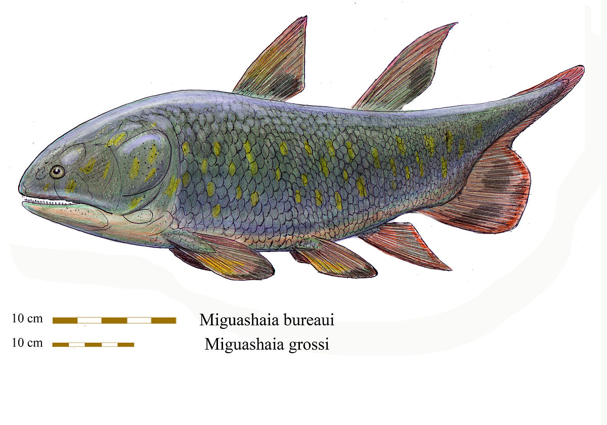 Miguashaia - Wikipedia
