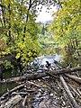 Mill Creek Ravine in September.jpg