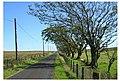 Minor Road Over Drumboy Hill - geograph.org.uk - 241380.jpg