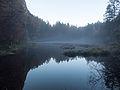 Misty Lake.jpg
