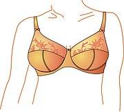 a1a1460d030 List of bra designs