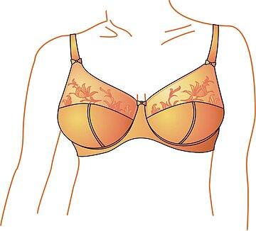 See Through Non Padded  Bra Underwire Mesh Underwear Bralette Sz 12-22 Cup B-E F
