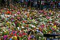 More flowers.jpg