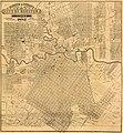 Morrison & Fourmy's 1882 Map of City of Houston.jpg