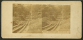 Mount Jefferson Plane, S.B.R.R. (Switchback Railroad), Pa, from Robert N. Dennis collection of stereoscopic views.png