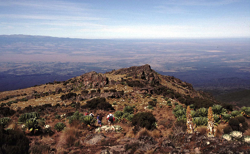 File:Mount Kenya near the vertical bog.jpg