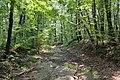 Mountain Road (Johnstown Highway) - panoramio (68).jpg