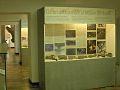 Museo Fossili Besano 1.jpg