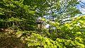 NSG-Gebiet Greifenstein Kennung 158 WDPA 163316 und FFH-Gebiet Muschelkalk-Landschaft westlich Rudolstadt Listen Nr.5233-304 DE-TH An der Kesselwarte II.jpg