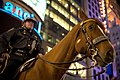 NYC Police officer on horse.jpg