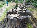 Na szlaku Czerniawa Zdroj.jpg