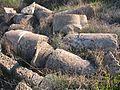 Nahsholim-Tel-Dor-3220.jpg