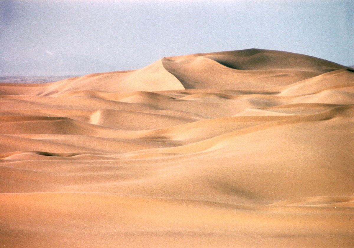 deserto - Wiktionary