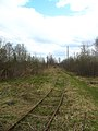 Narrow Gauge Railroad Vasilevsky peat enterprise 2005 (32162209905).jpg